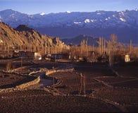 L'hiver dans Leh, Ladakh Photo libre de droits