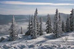 L'hiver dans les montagnes #001 Image stock