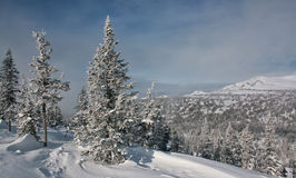 L'hiver dans les montagnes #006 Images libres de droits