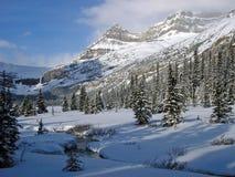 L'hiver dans les Rocheuses photographie stock