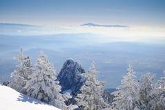 l'hiver de 5 séries Photographie stock libre de droits