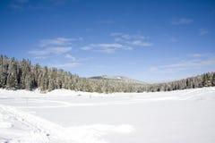l'hiver de beauté Photo libre de droits