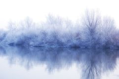 l'hiver de blanc d'horizontal Images stock