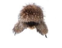 L'hiver de capuchon de fourrure d'Earflaps Photos libres de droits