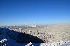 l'hiver de Carpathiens photographie stock