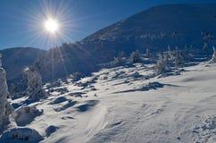 l'hiver de Carpathiens images libres de droits