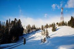 l'hiver de chemin forestier Photo libre de droits
