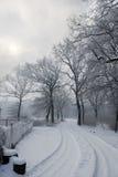l'hiver de conte Photographie stock libre de droits