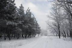 l'hiver de conte Photographie stock
