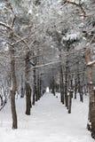 l'hiver de conte Images libres de droits