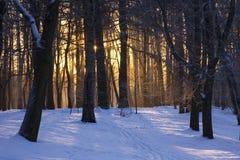 l'hiver de conte de fées Images stock
