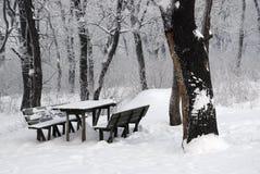 l'hiver de contes Photo stock