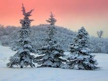 l'hiver de coucher du soleil Photos libres de droits