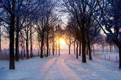 l'hiver de coucher du soleil Photo stock