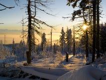 l'hiver de coucher du soleil Images stock