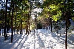 L'hiver de la Nouvelle Angleterre Photographie stock libre de droits