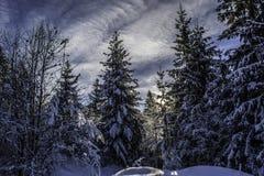l'hiver de la Roumanie Photo libre de droits