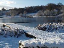 L'hiver de lac snow scénique Images stock