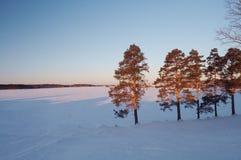 l'hiver de lanscape Photos stock
