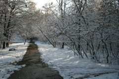 l'hiver de lanscape image stock