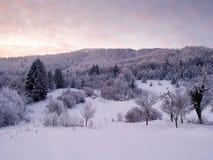 l'hiver de lever de soleil Photographie stock