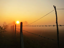 l'hiver de lever de soleil de matin de la Lithuanie d'image de hdr photo stock