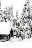 l'hiver de maison Photo libre de droits
