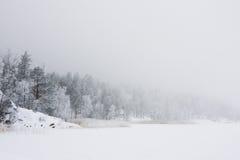 l'hiver de matin de lac de forêt Images libres de droits