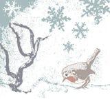 l'hiver de merle illustration libre de droits