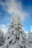 L'hiver de Milou en montagnes Image stock