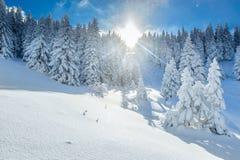 L'hiver de Milou en montagnes Images stock