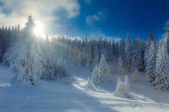 L'hiver de Milou en montagnes Photographie stock libre de droits