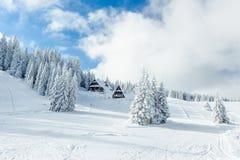 L'hiver de Milou en montagnes Photo libre de droits