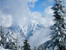 l'hiver de montagnes Photos stock