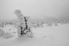 l'hiver de montagnes Image libre de droits