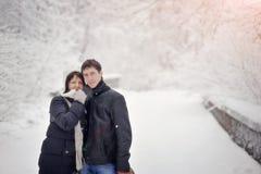 L'hiver de neige Photographie stock libre de droits