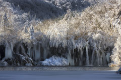 l'hiver de neige de plitvice de lacs de la Croatie Photographie stock libre de droits