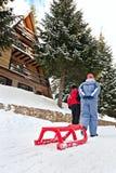 L'hiver de neige de traîneau a dessiné par pour deux personnes Photos libres de droits