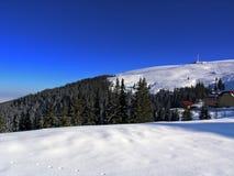 l'hiver de panorama Photos libres de droits