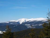 l'hiver de panorama Photographie stock libre de droits