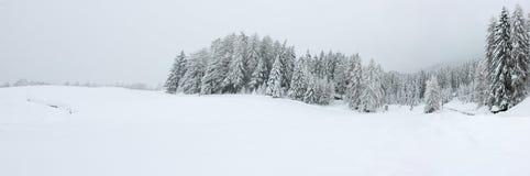 l'hiver de panorama Images libres de droits