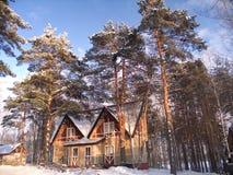 L'hiver de pays Photos stock