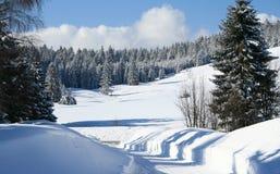l'hiver de route Image libre de droits