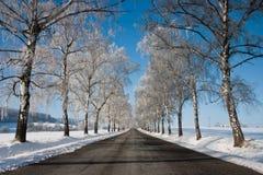 l'hiver de route Photos stock