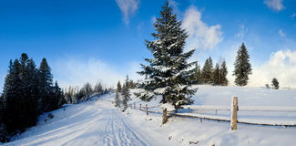 l'hiver de route de montagnes Photographie stock