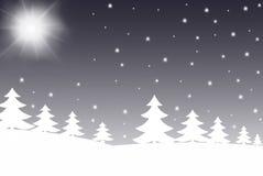 l'hiver de scène Images libres de droits