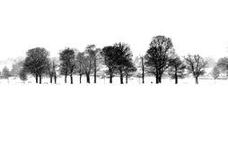 l'hiver de scène Images stock