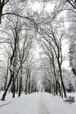 l'hiver de stationnement Image stock