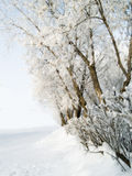l'hiver de stationnement Photo libre de droits