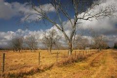 l'hiver de terres cultivables photographie stock
